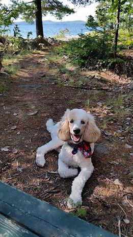 Patty/Ivy loves camping!